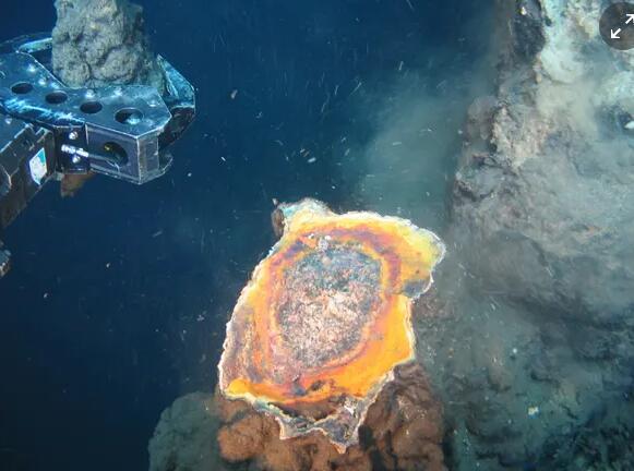 """""""巴布亚新几内亚深海采矿业的崩溃引发了暂停征集"""
